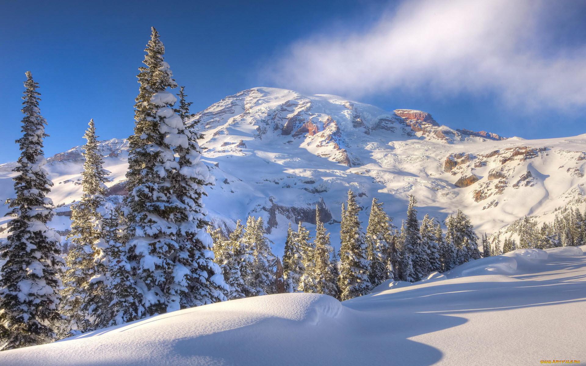 картинки зима снег на рабочий стол дальнейшем херсонес